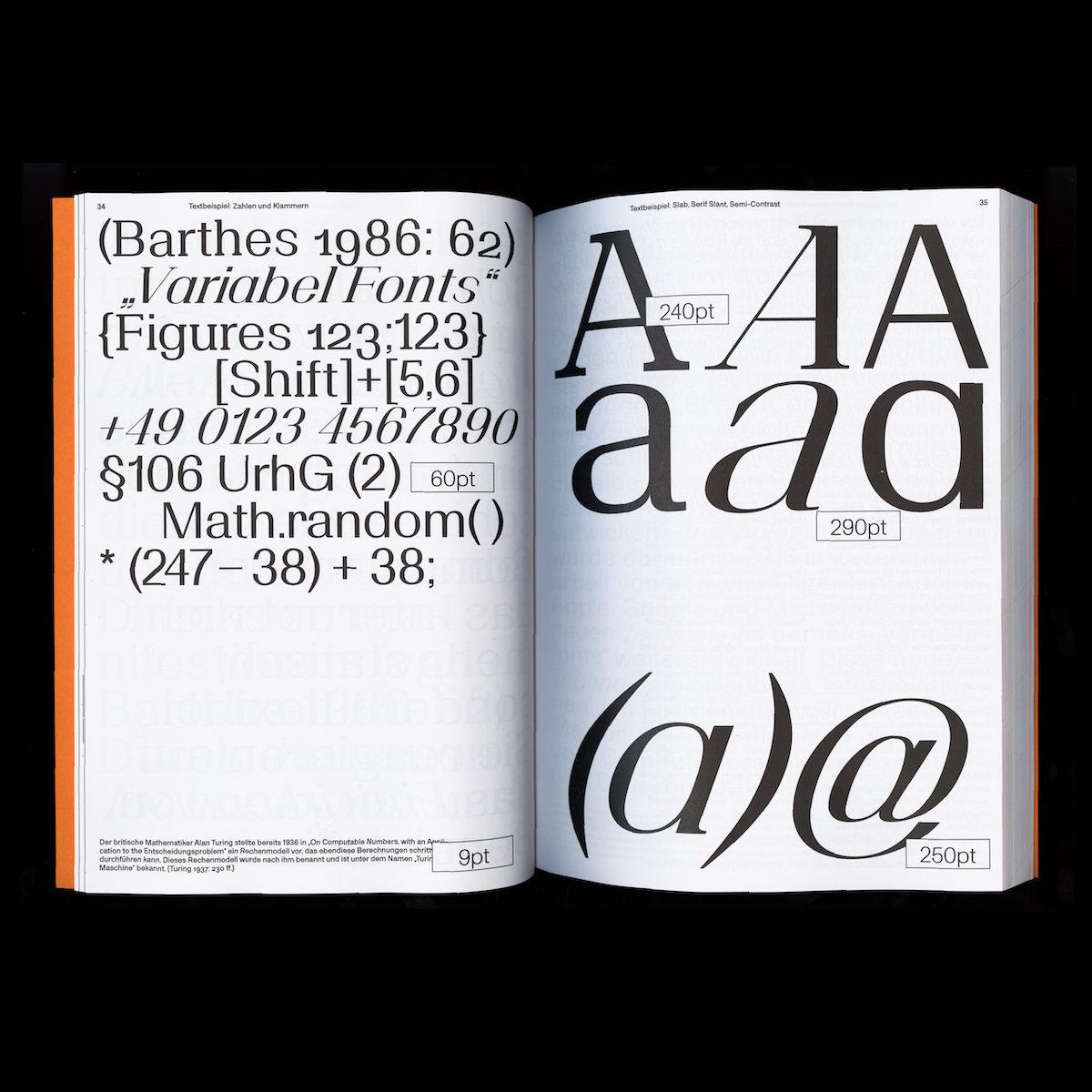 Speculative type book