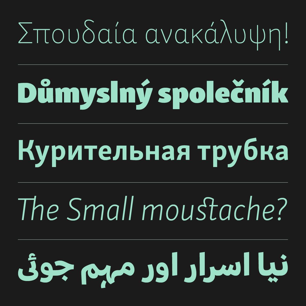 Skolar Sans –an extensive multicript type system